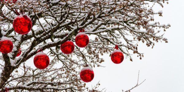 Přejeme vám klidné Vánoce a šťastný nový rok 2020!